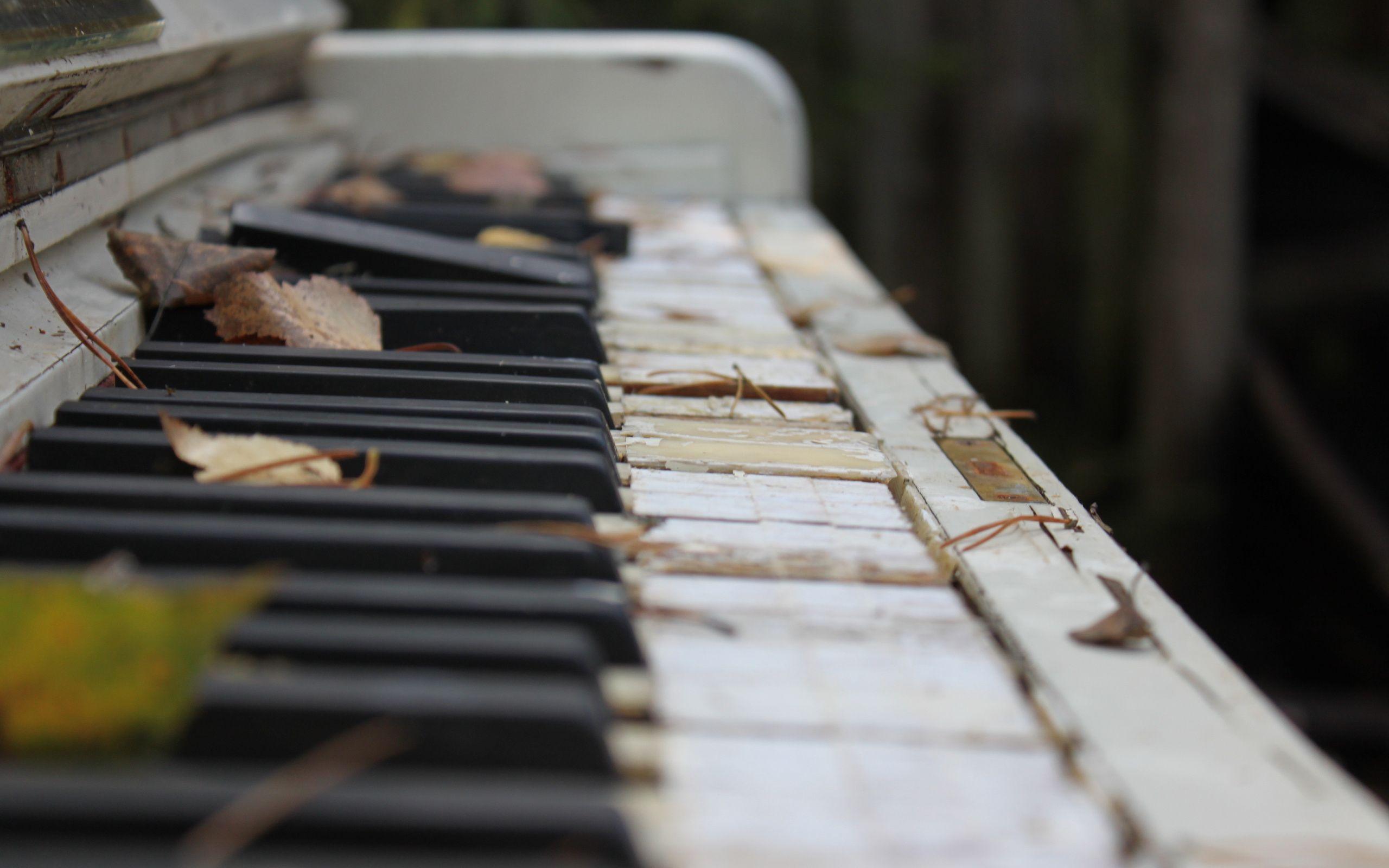 Пианино  № 1529659  скачать
