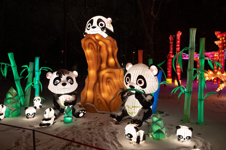 Фестиваль волшебных китайских фонарей в парке «Сокольники» фото 3