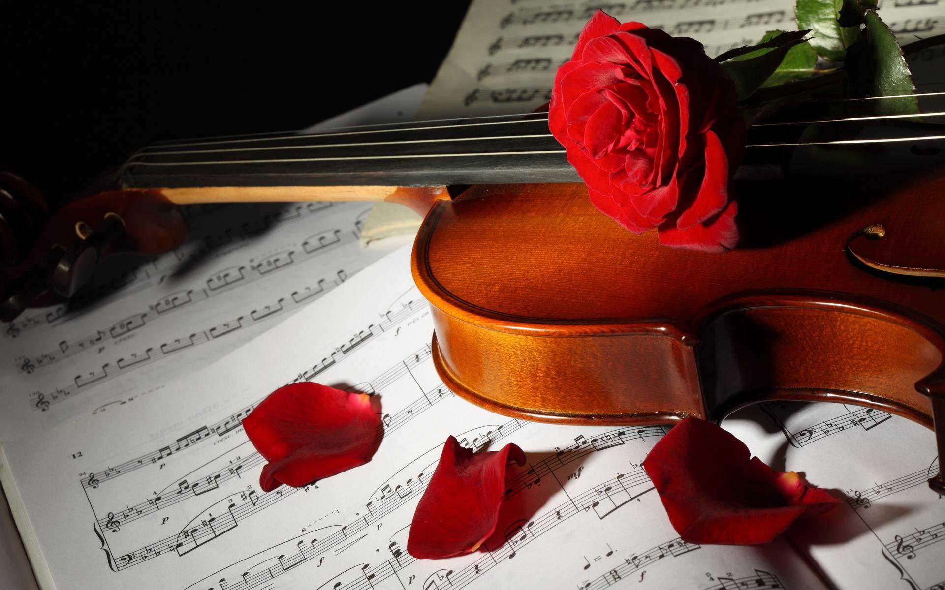 скрипка, ноты, торт  № 1908187 бесплатно