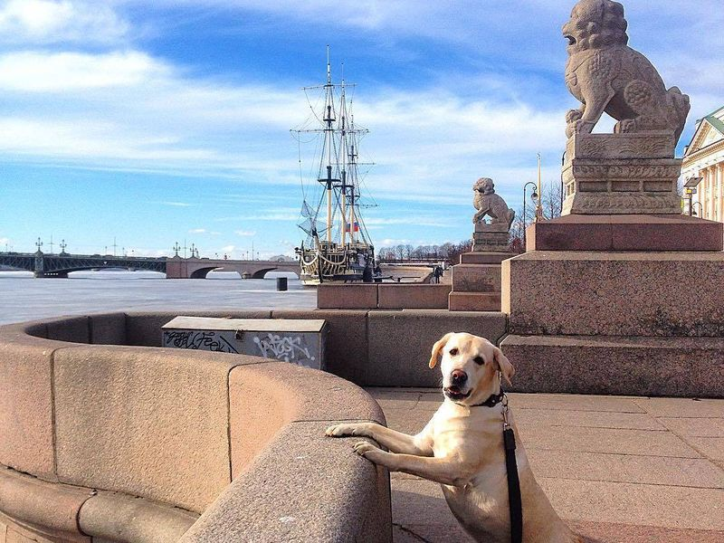 Экскурсия «Автомобильное путешествие по Санкт-Петербургу» фото 5