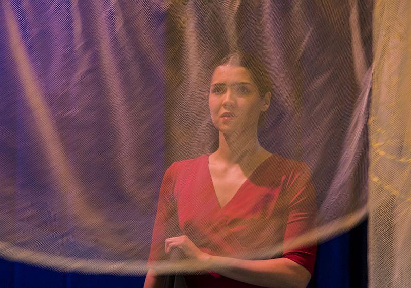 Спектакль «Фрида. Жизнь в цвете» в Театре имени Евг. Вахтангова фото 1