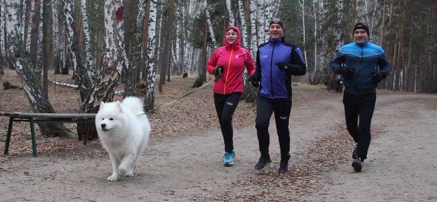 Parkrun Парк Горького — еженедельный бесплатный забег на 5 км фото 2