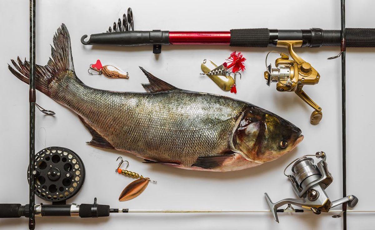 рыбалка рыбацкие принадлежности
