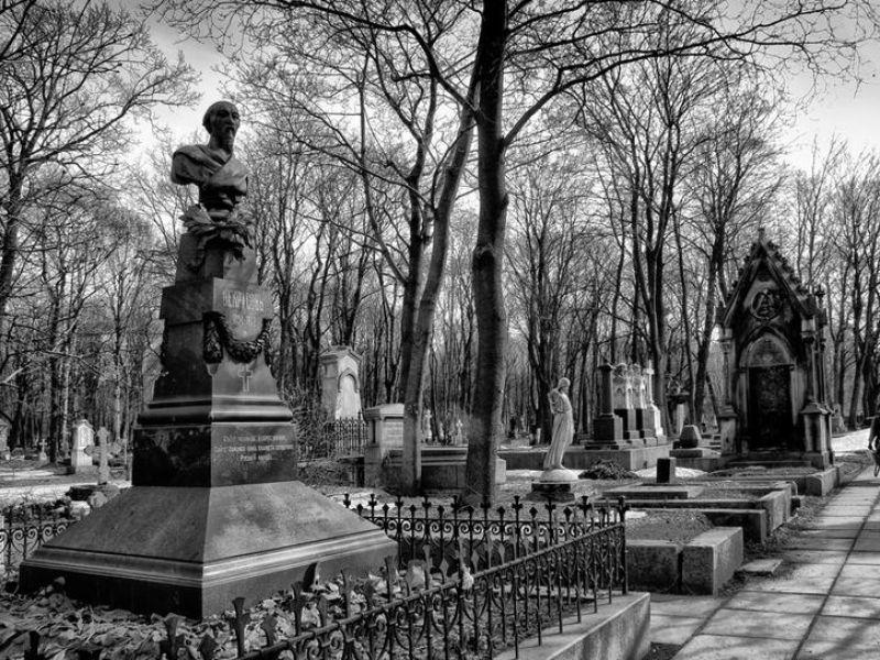Экскурсия по Новодевичьему монастырю фото 5
