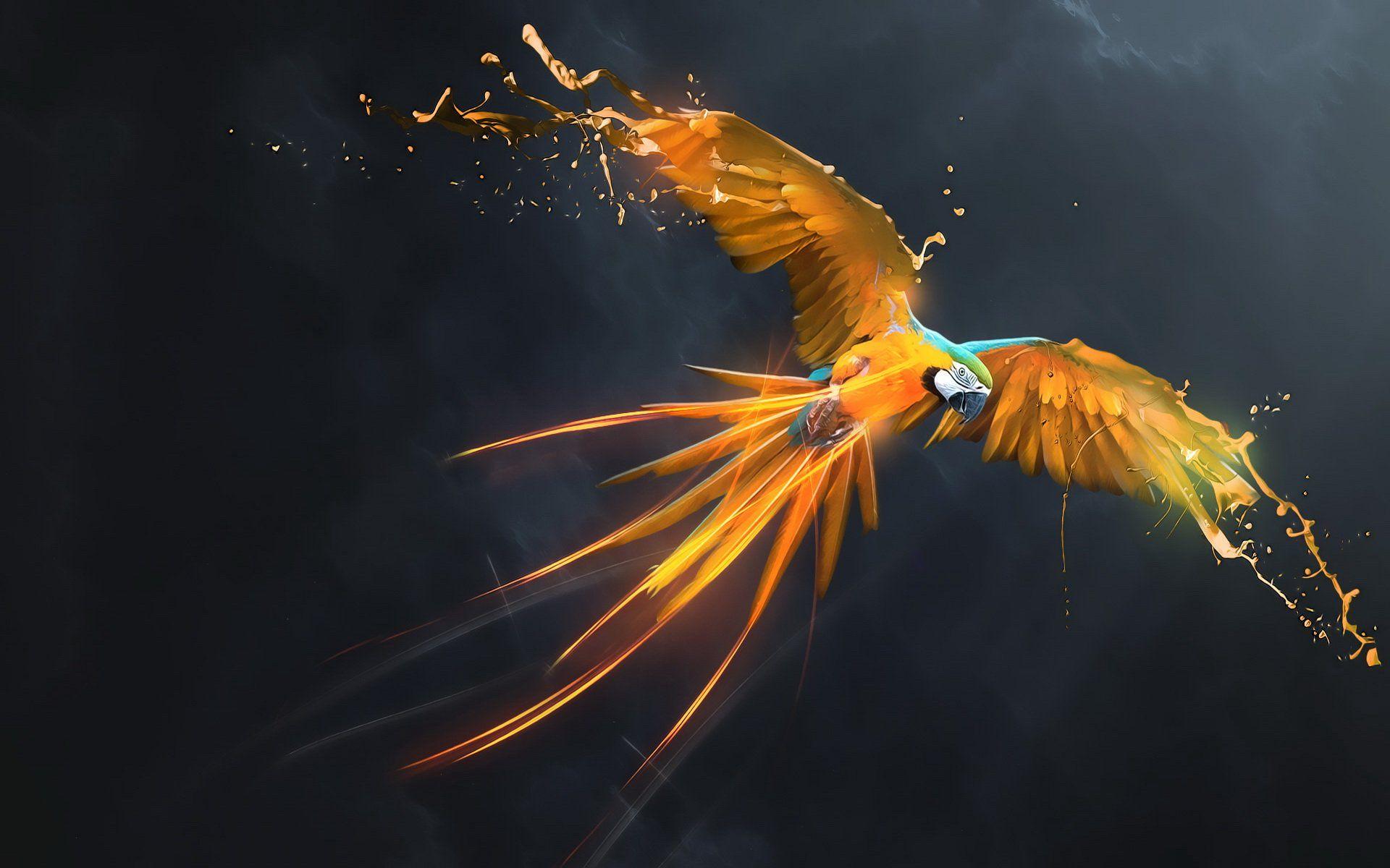 попугай краски рисунок загрузить