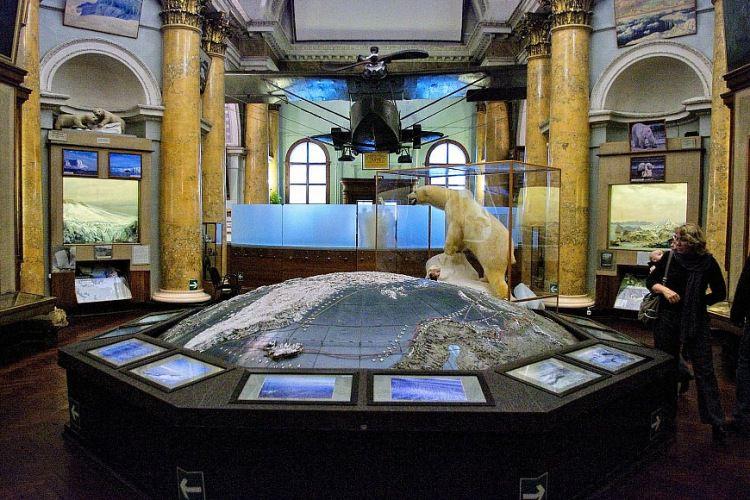 экспозиция музея Арктики и Антарктики «Природа Арктики»
