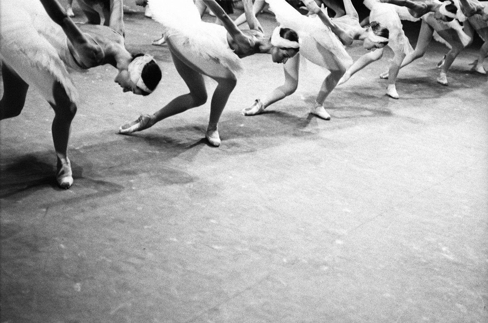 Выставка «Большой балет by Sasha Gusov» фото 3