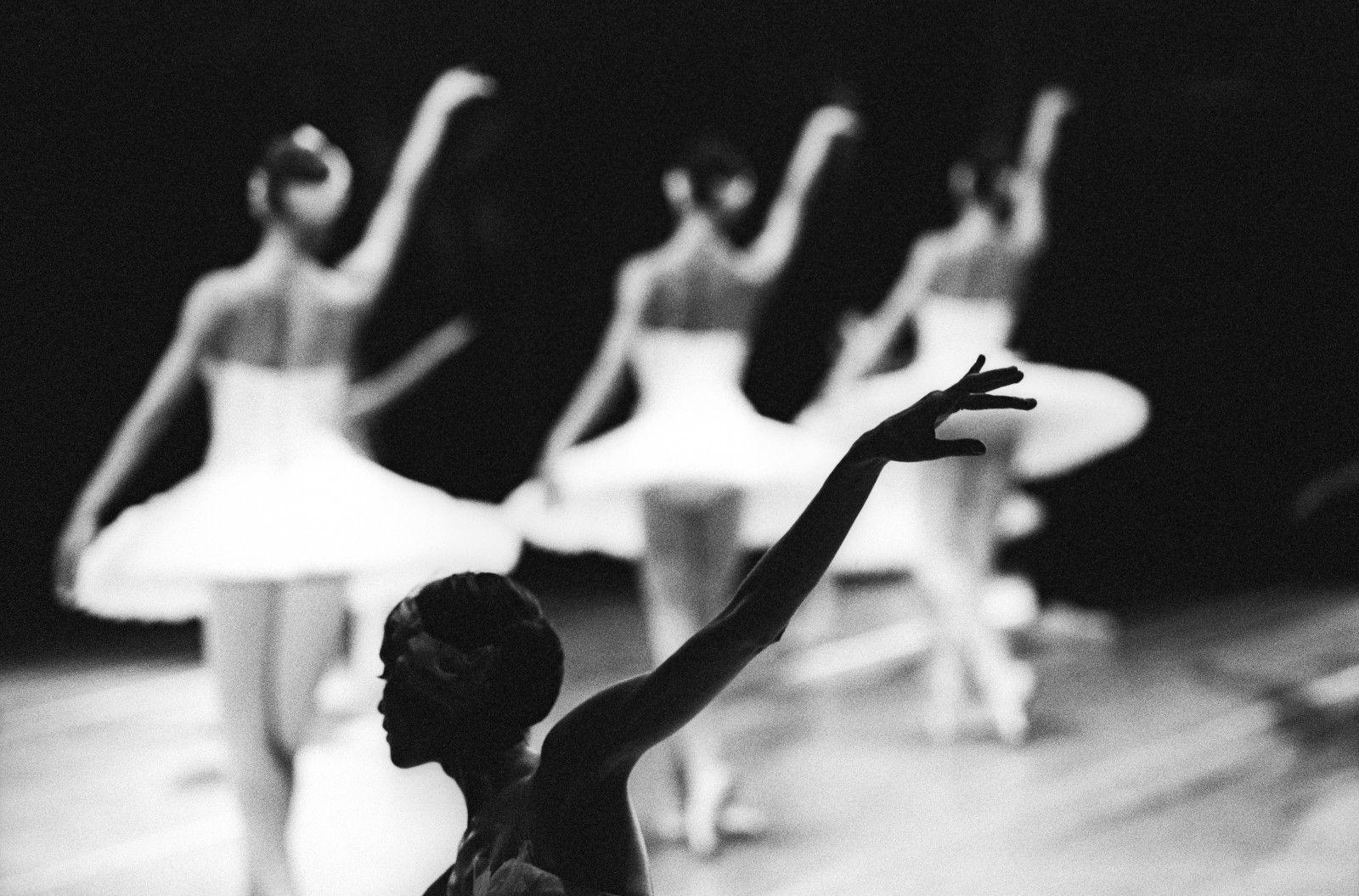 Выставка «Большой балет by Sasha Gusov» фото 4