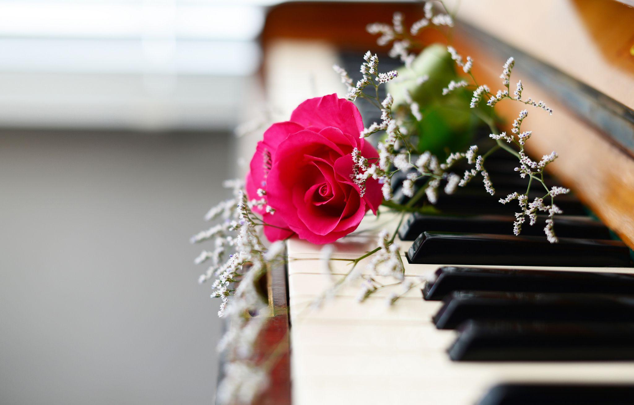 Картинки с цветами и нотами, душ