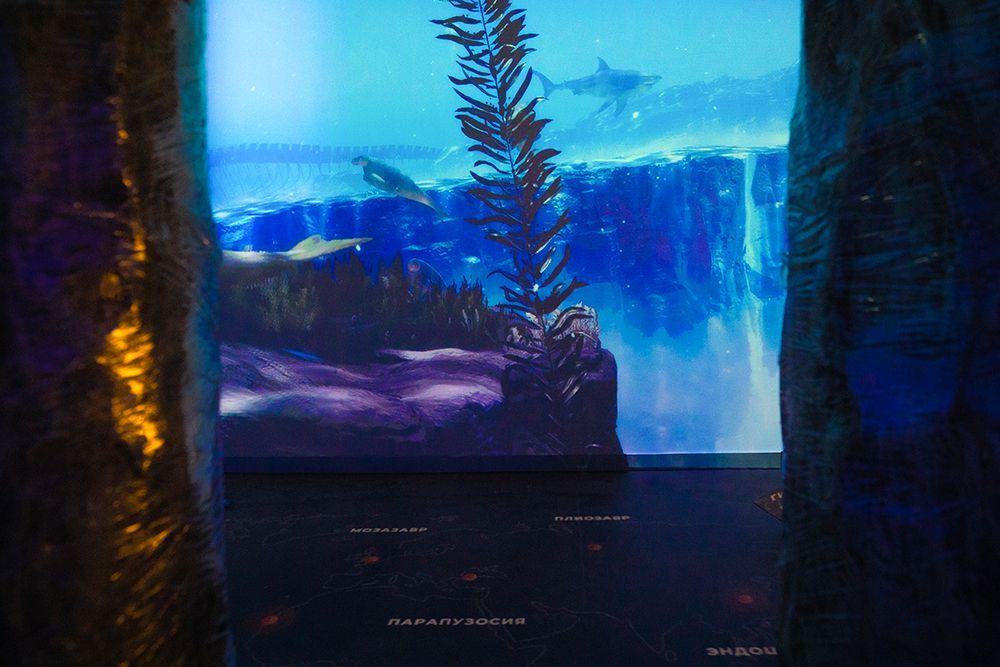 Интерактивная мультимедийная выставка «Океан юрского периода» в «Москвариуме» фото 2