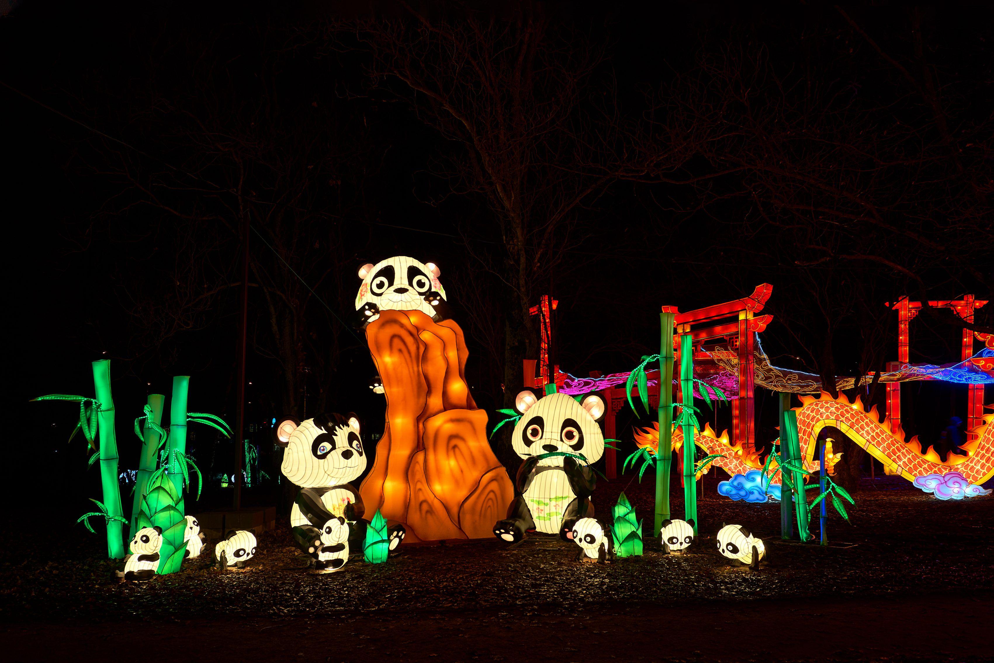 Фестиваль волшебных китайских фонарей в парке «Сокольники» фото 5
