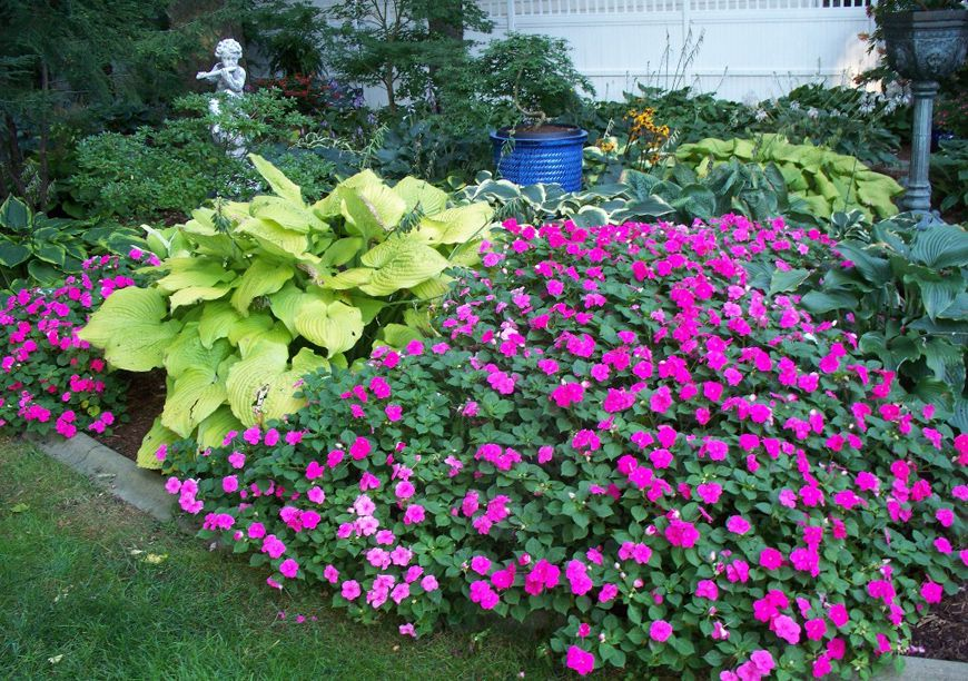ground cover plants for shade under trees round designs landscaping - Garden Ideas Under Trees