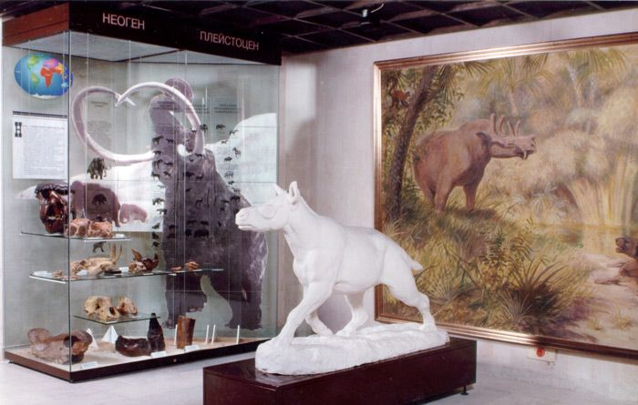 Постоянная экспозиция Дарвиновского музея «Развитие органического мира» фото 2