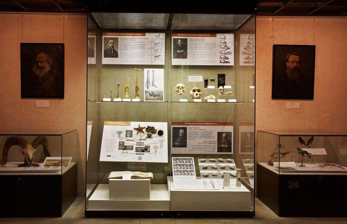 Постоянная экспозиция Дарвиновского музея «Этапы познания живой природы» фото 5