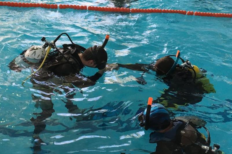 Начальный курс дайвинга Open Water Diver фото 1