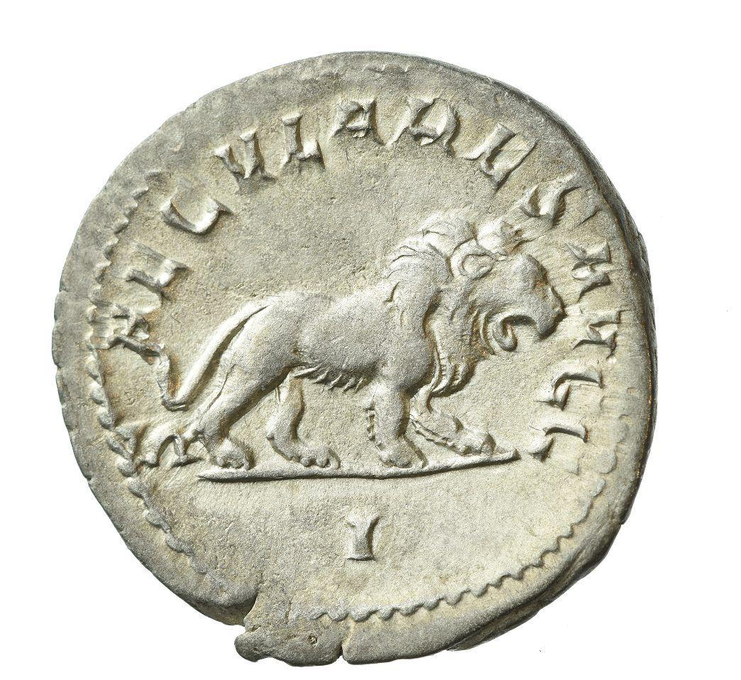 Выставка «Животные на монетах» фото 10