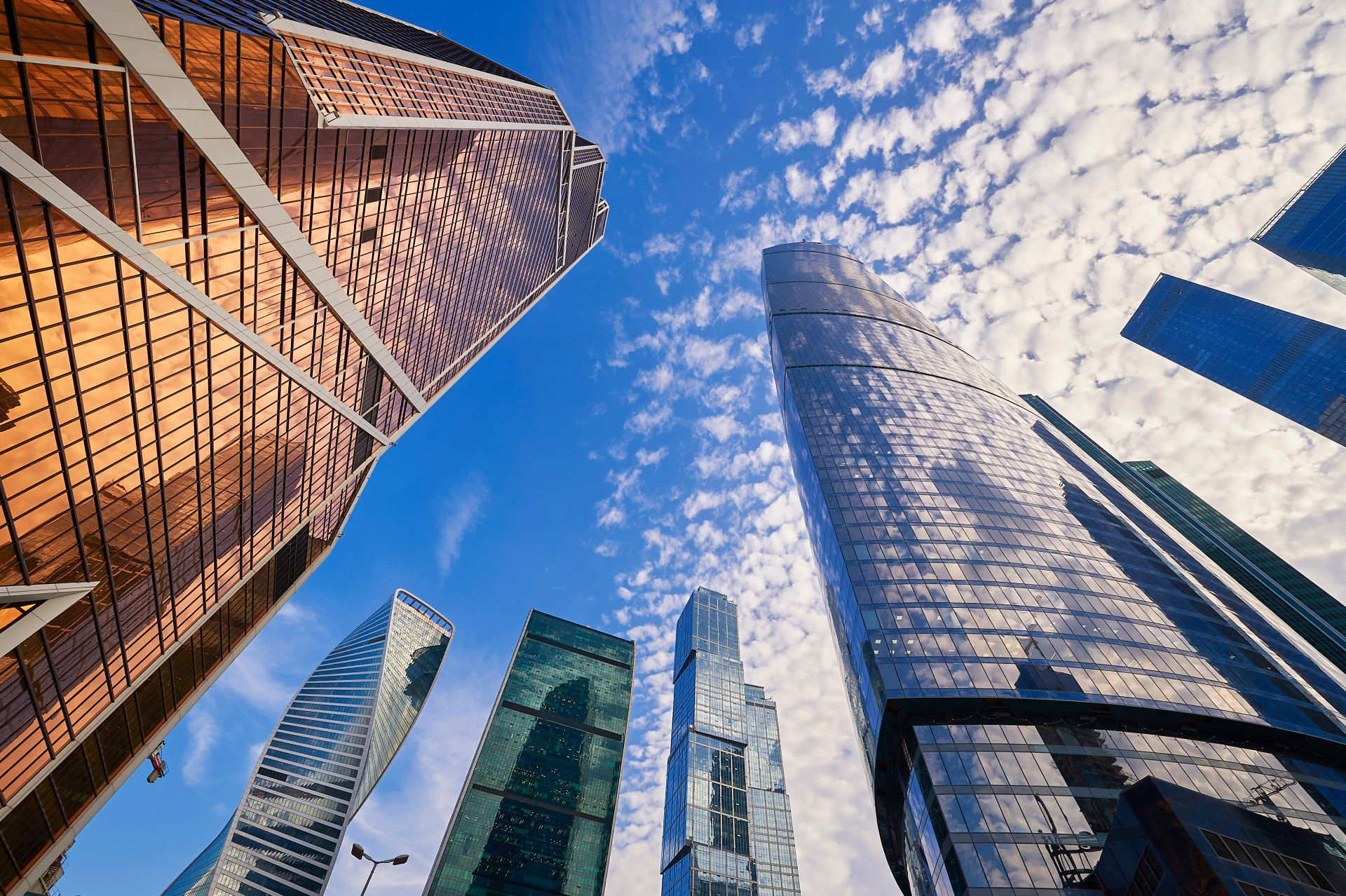 Экскурсия на смотровую площадку «Москва-Сити» фото 1