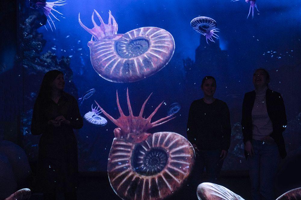 Интерактивная мультимедийная выставка «Океан юрского периода» в «Москвариуме» фото 6