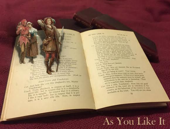 as you like it essay