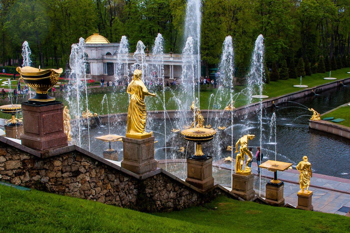 Прямые трансляции музея-заповедника «Петергоф» фото 5