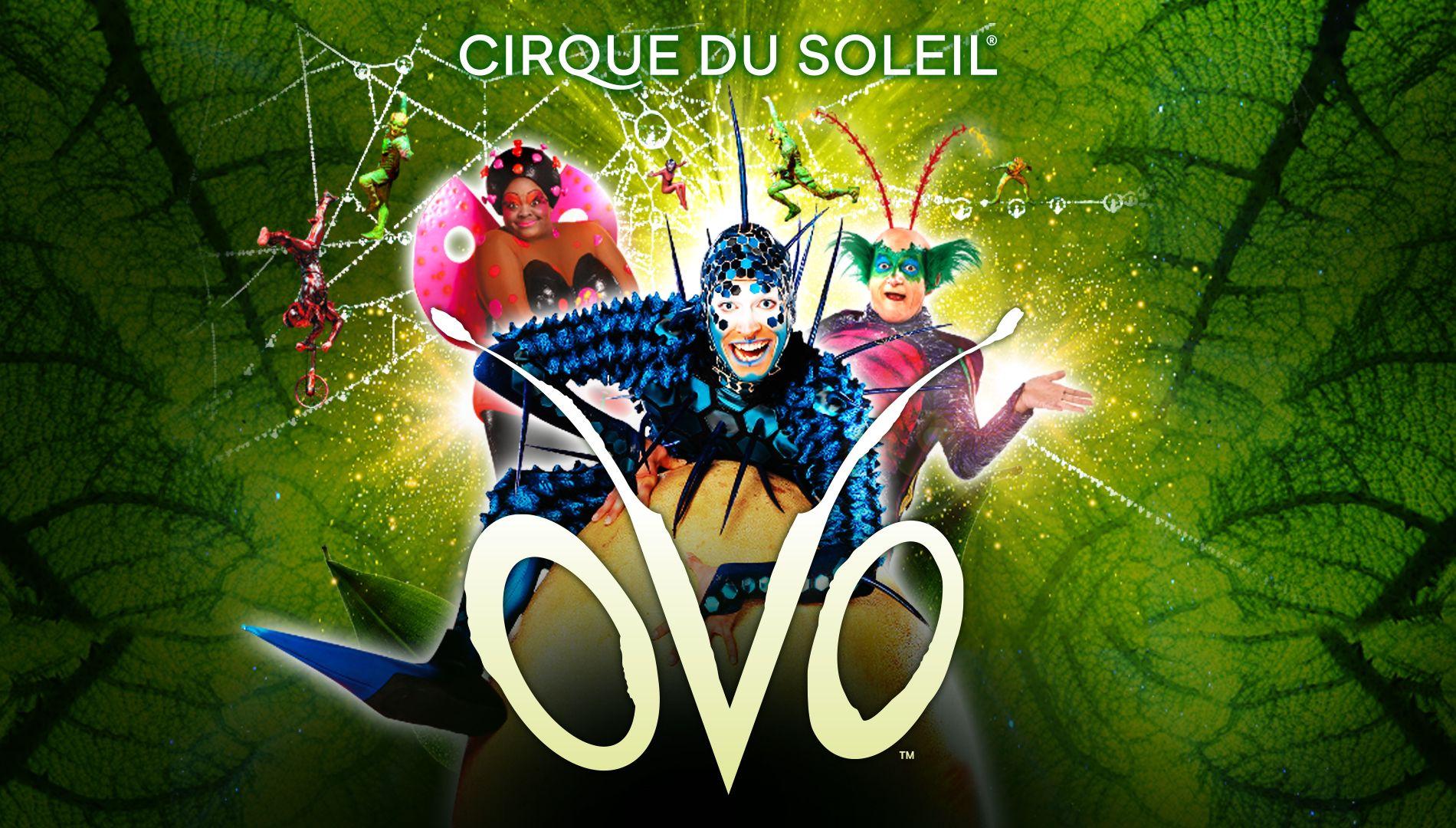 Шоу OVO от Сirque du Soleil фото 1