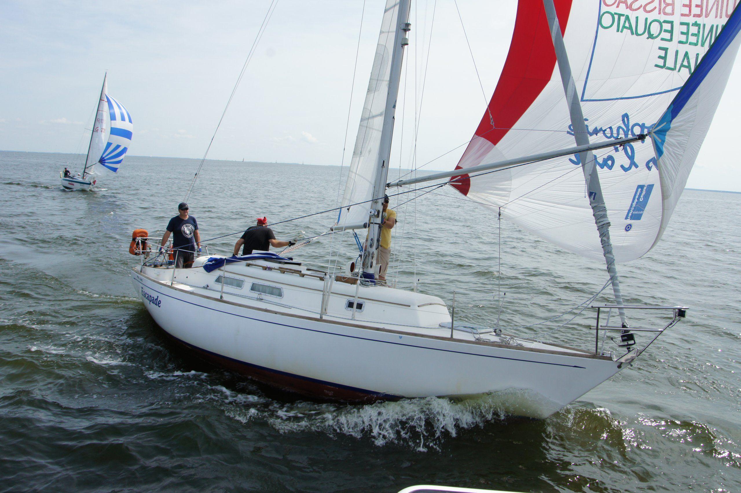 Прогулка на парусной яхте с обучением и практикой фото 3