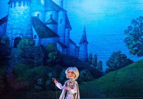 Спектакль «Царевна-лягушка» в Сказочном театре фото 1