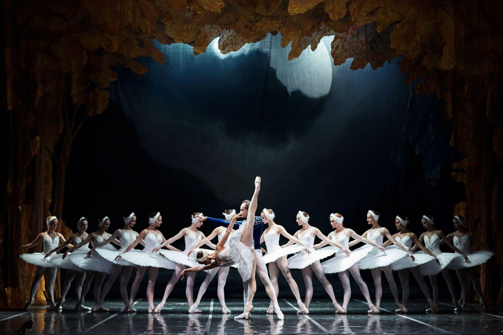 сегодня, имея балет лебединое озеро фото комбинации более