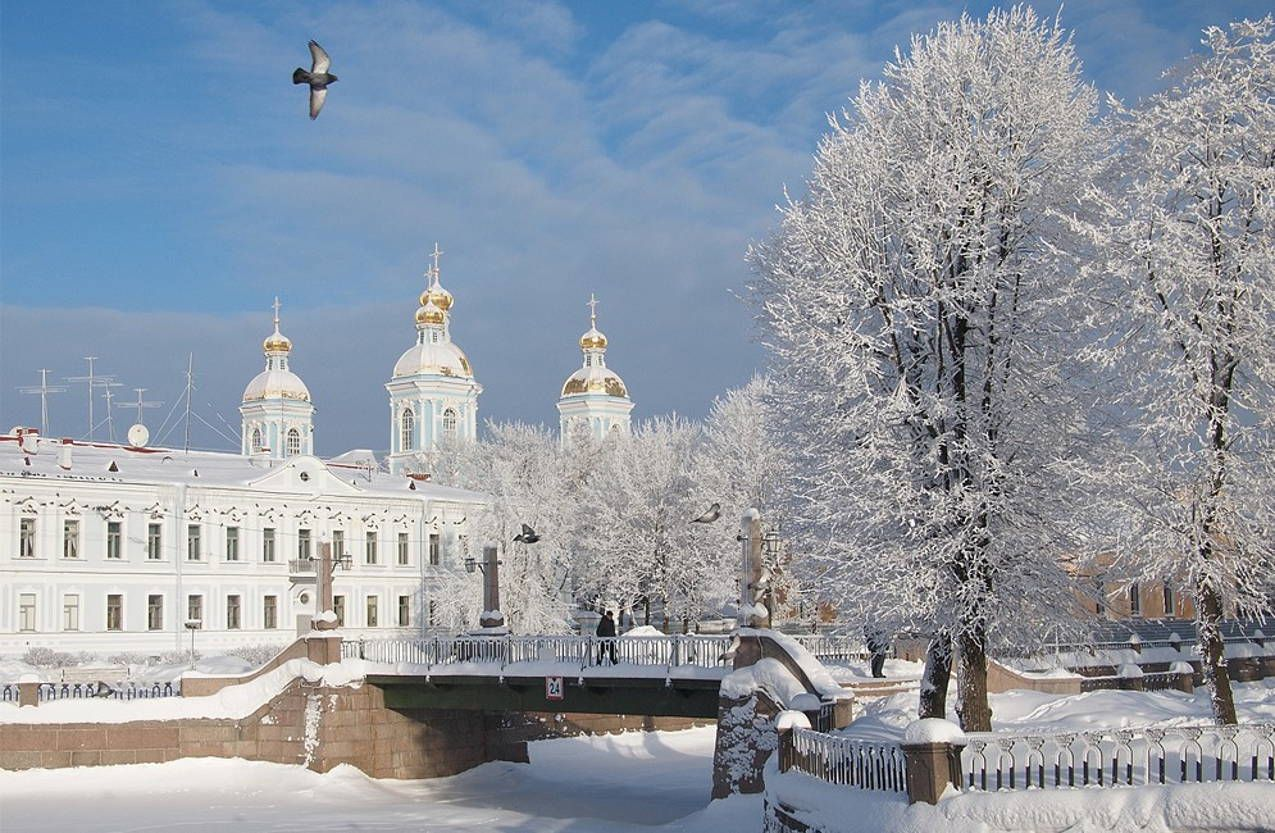 зря санкт петербург зимой картинки этом