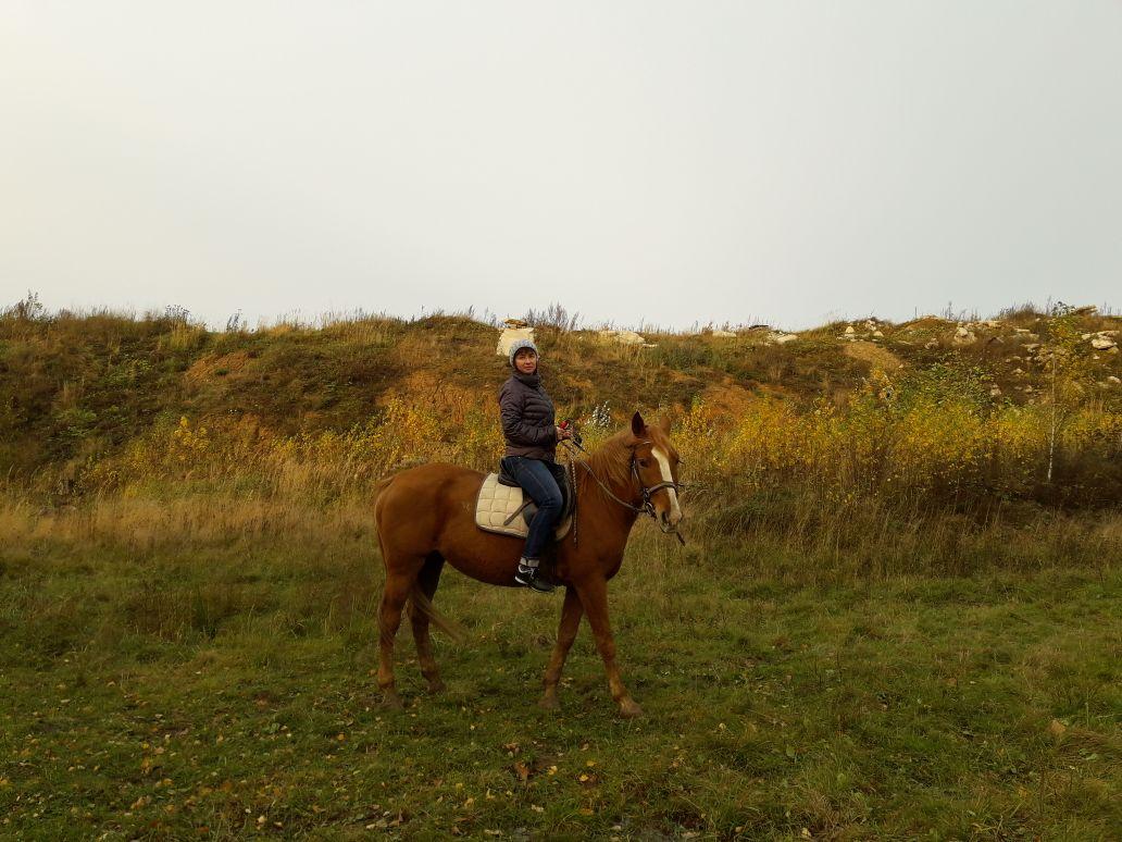 Прогулки на лошадях от конного двора «Хутор» со скидкой до 66% фото 3