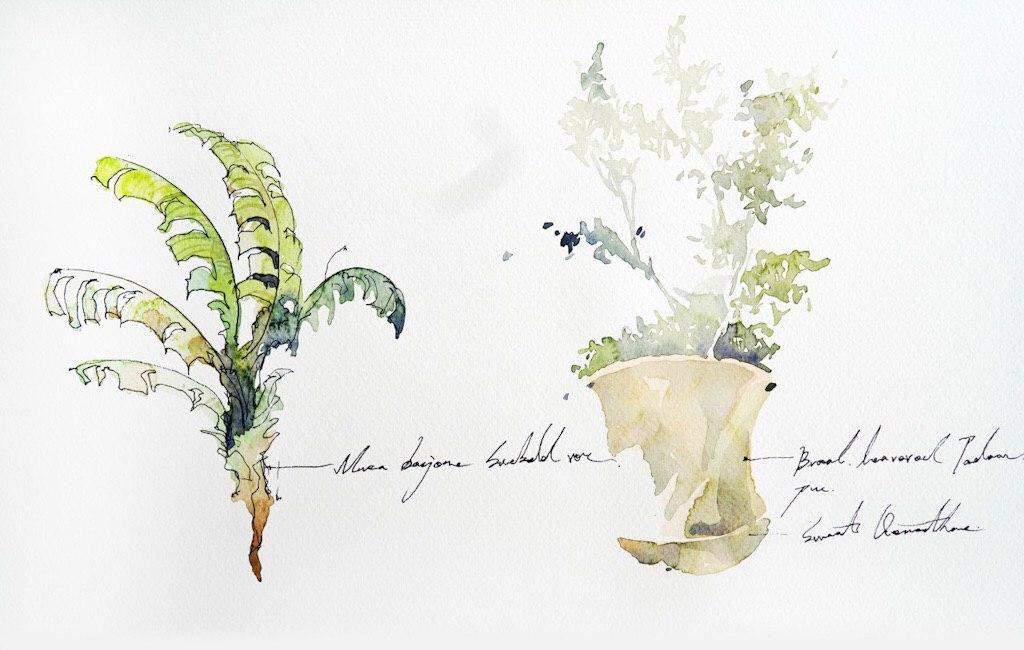 Онлайн-курс «Зарисовки путешествий» с тайваньской художницей Юджи Кай от ARTLIFE ACADEMY фото 5