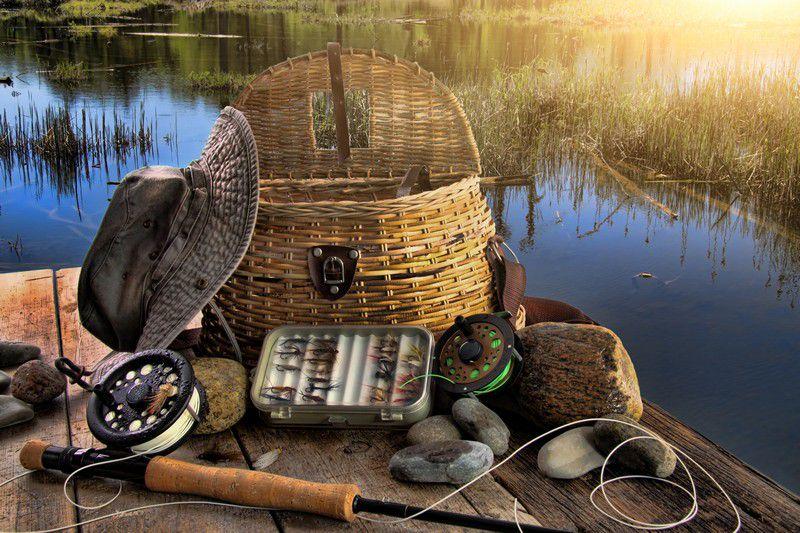 рыболовная база успех каждодневный отчет