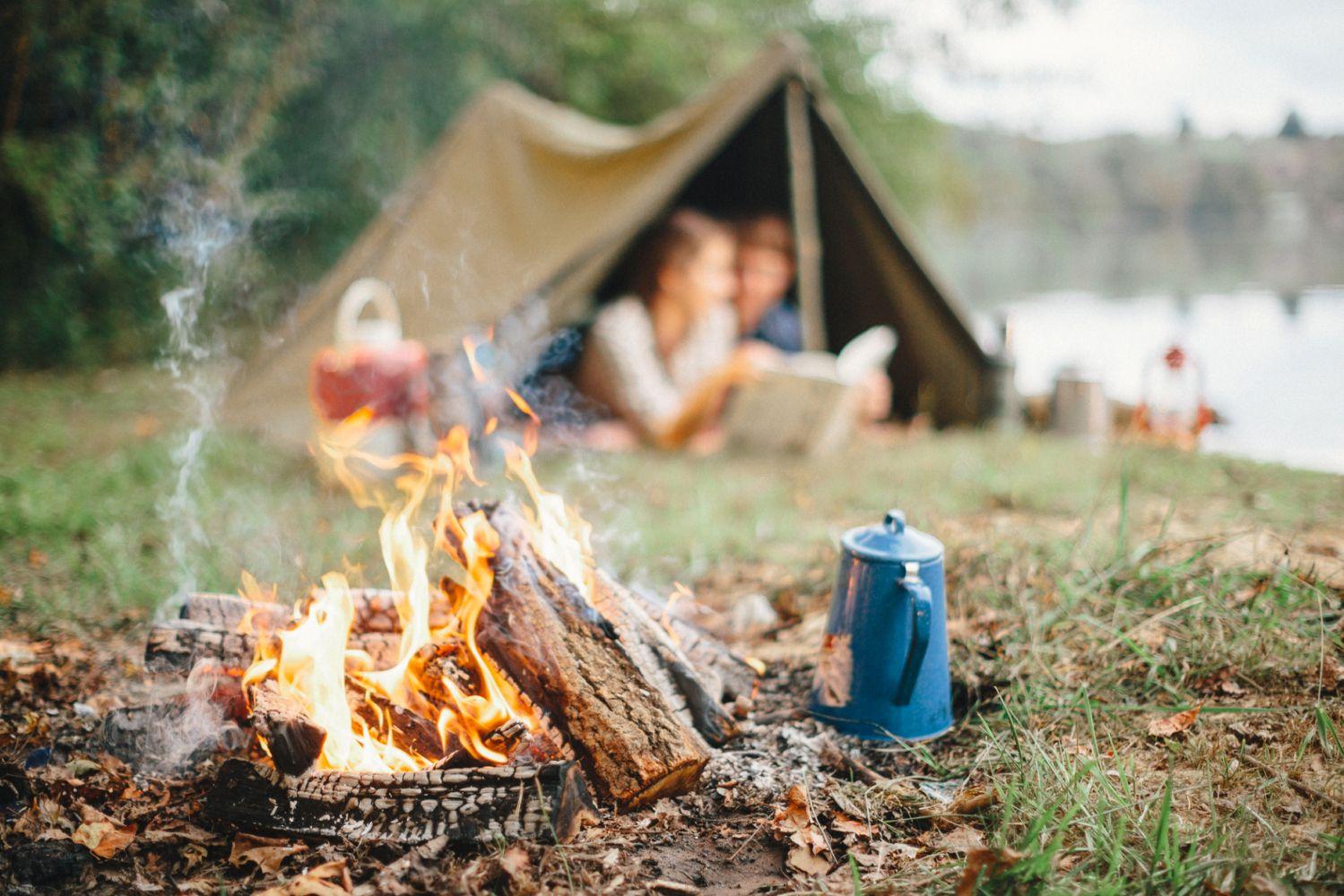Шашлыки в лесу картинка для детей