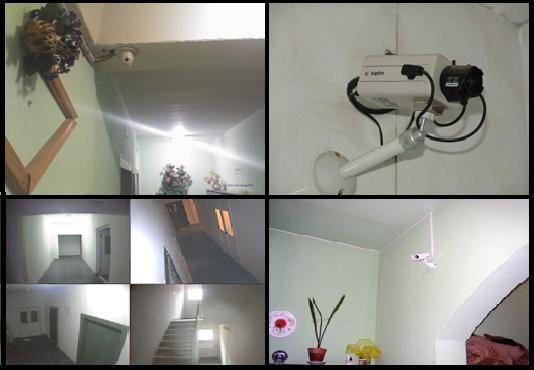 onlayn-porno-roliki-veb-kamera