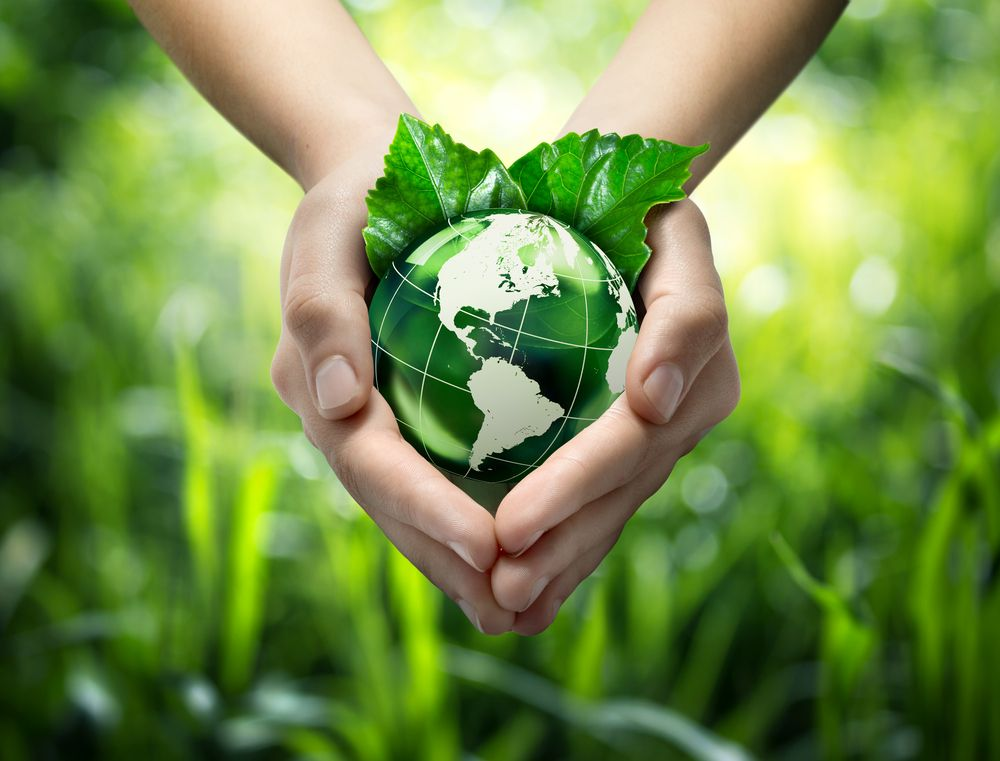 the importance of plastics to our lives and its contribution to the pollution of our environment Importance of recycling: he lives a green lifestyle and is often looking for ways to improve the environment around him recycle and save our environment today.