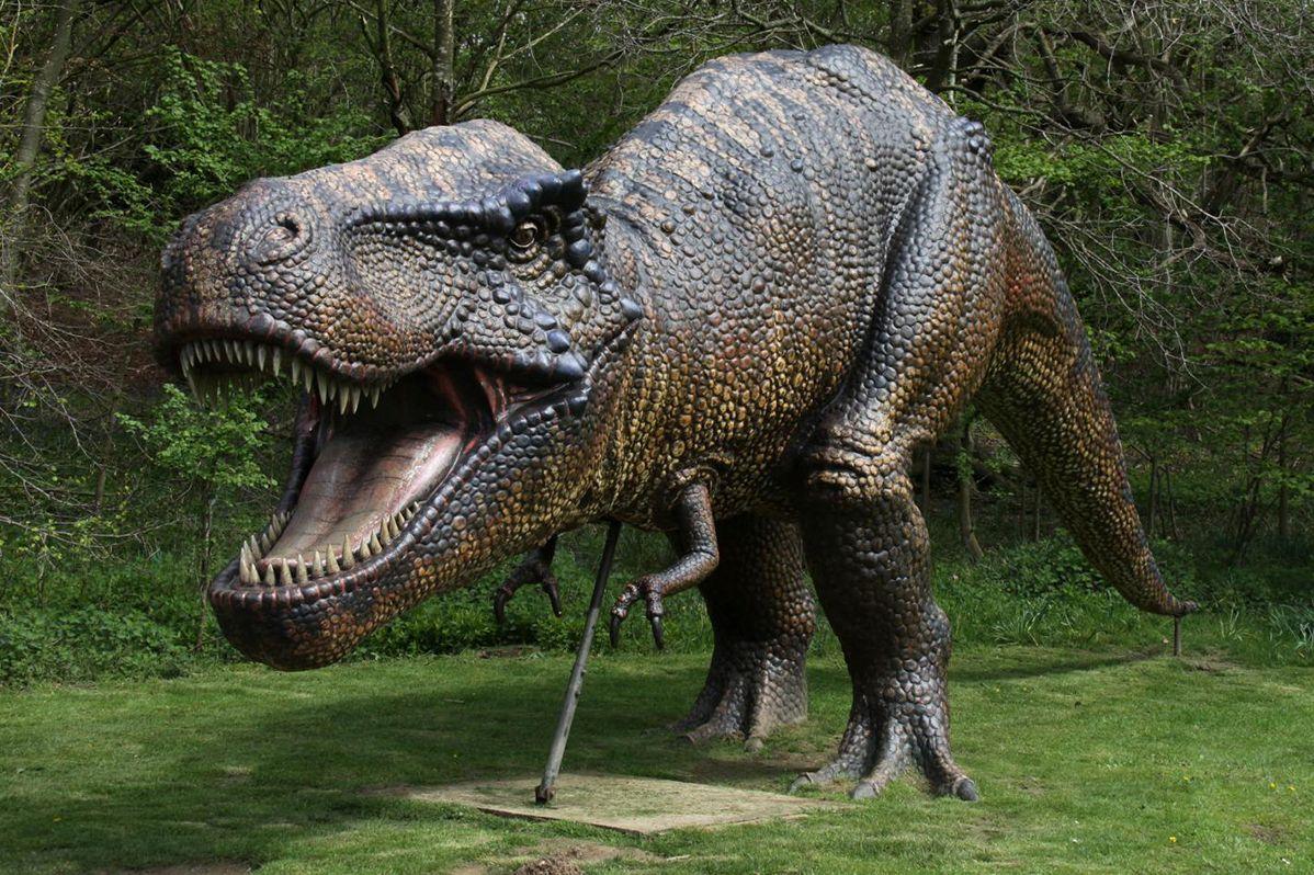 Картинки древних динозавров самых больших
