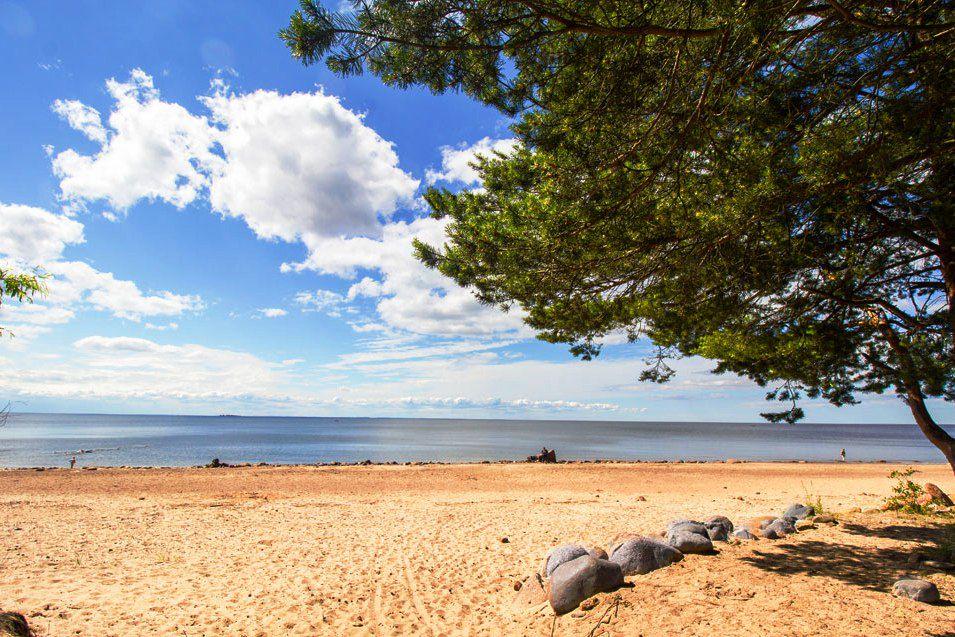 зеленогорск ленинградская область фото пляжей и набережной антикварных гравюр
