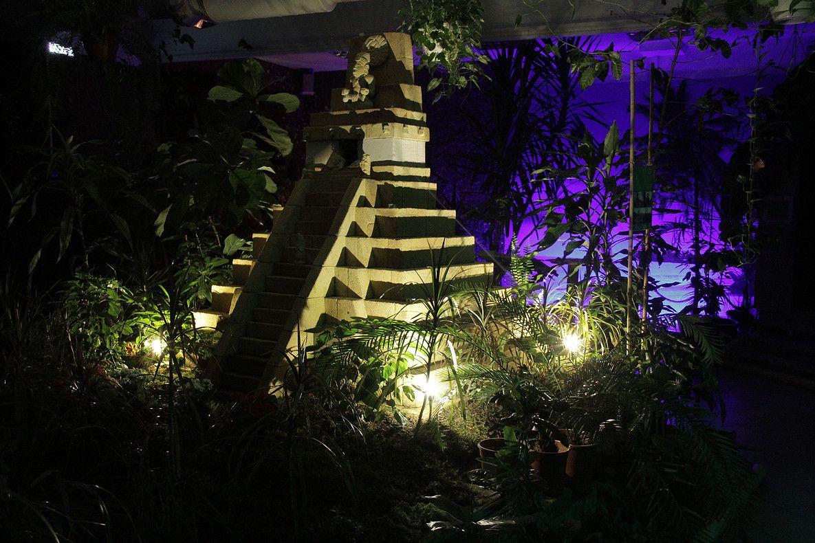 Ночные бабочки на ночь Жака Дюкло ул. проститутки-индивидуалки в Санкт-Петербурге похожие на звезд