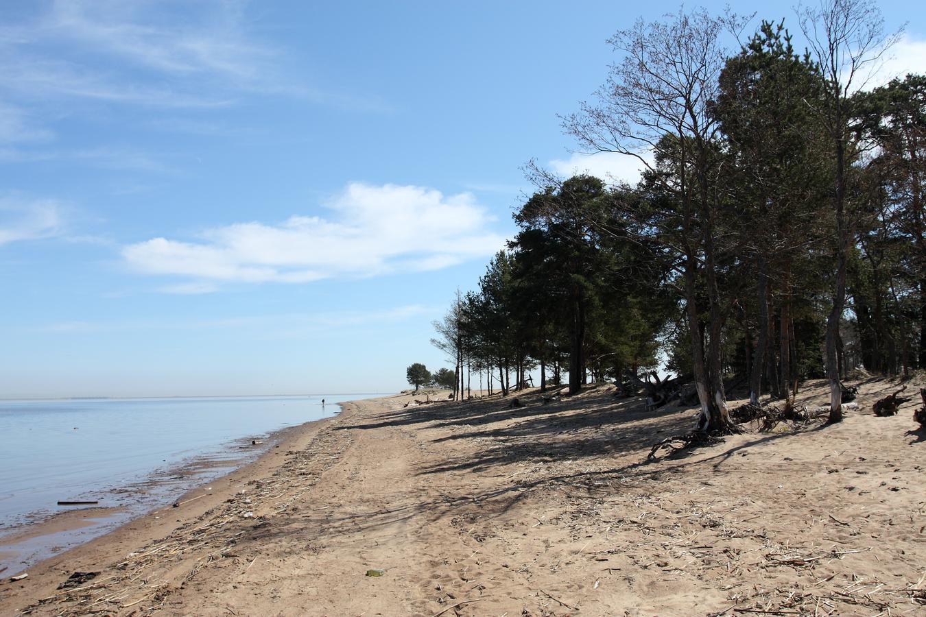 Нудистский пляж санкт-петербурга фото