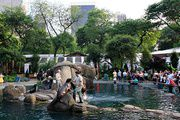 #3. Central Park Zoo