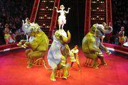 Цирк Никулина на Цветном бульваре