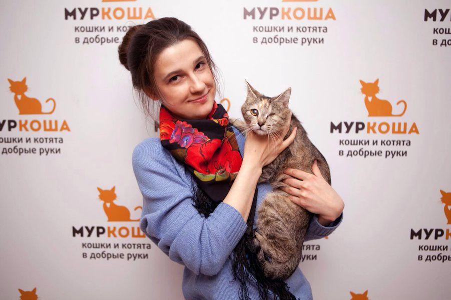 Выставка «Бездомный кот»