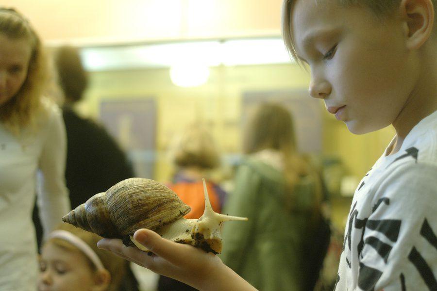 Выставка экзотических животных «ТерраМания»