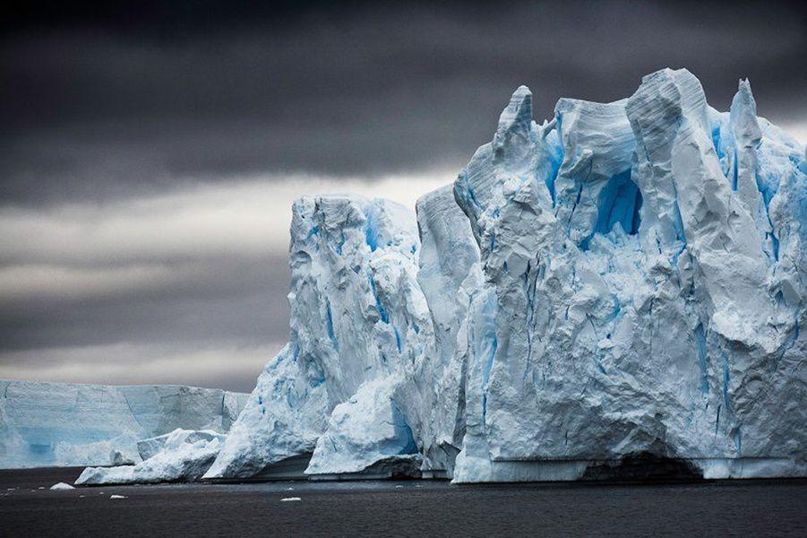 Выставка «Чистая Арктика Себастьяна Коупленда»