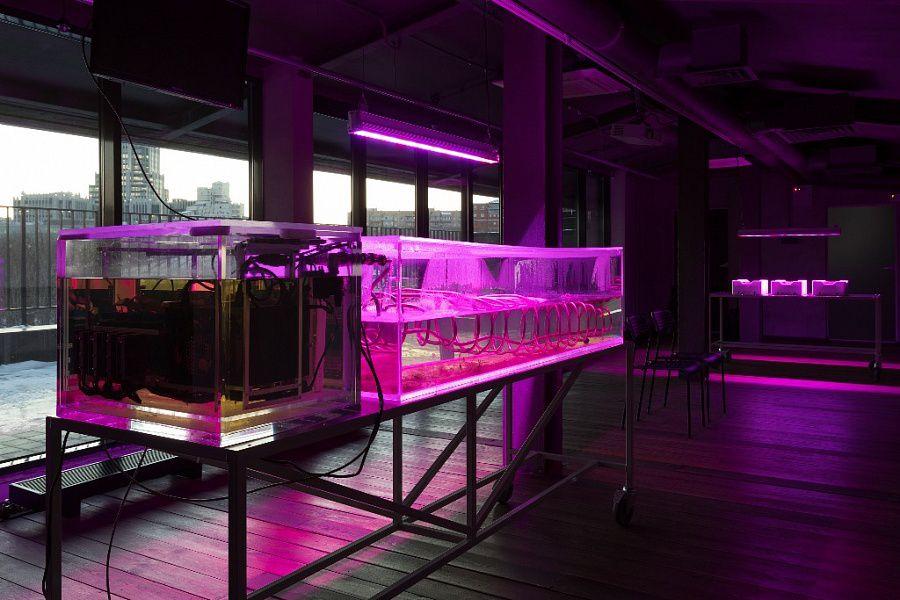 Выставка «Городская сауна. Как я научился не беспокоиться и полюбил загрязнение окружающей среды»