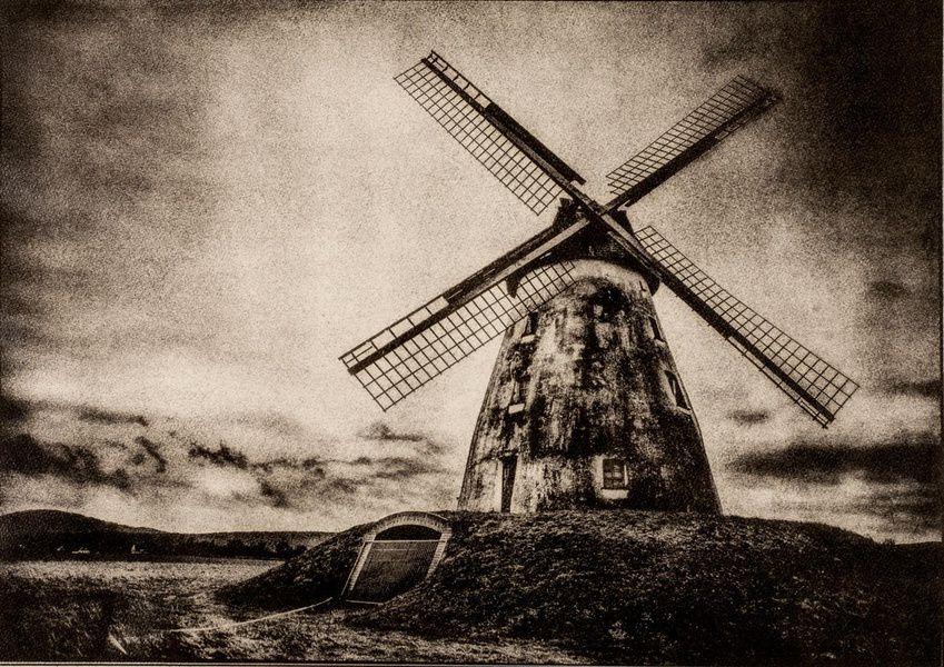 Выставка Анны Останиной «Фотография — холст, масло»
