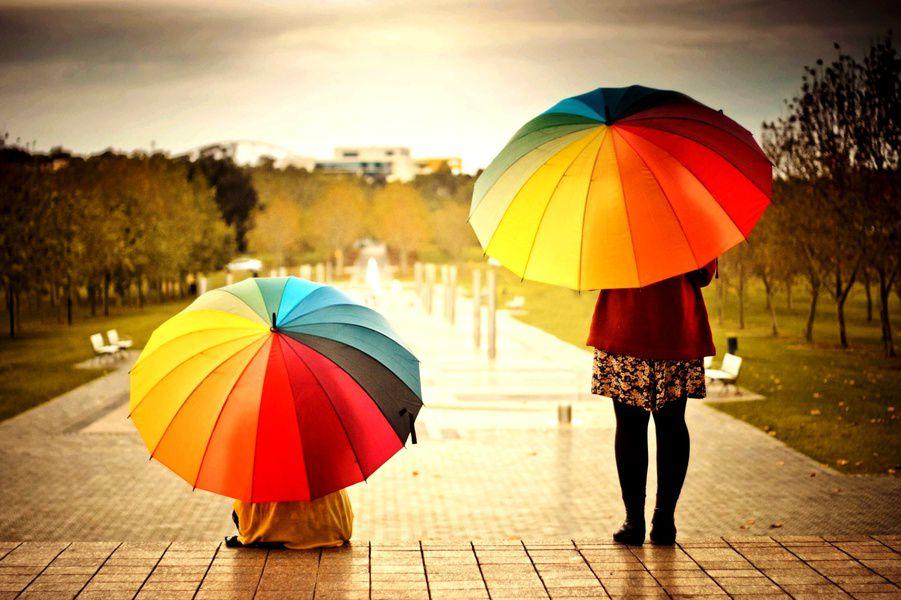Прокат зонтов в российской столице: начать предлагают спарков