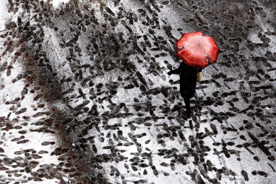 МЧС предупреждает петербуржцев обусилении ветра вчетверг