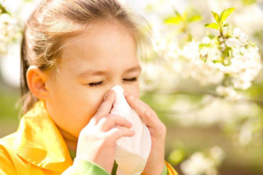 Google будет предупреждать пользователей обуровне аллергенов ввоздухе